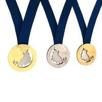 Olympic Games 2014 - Medals