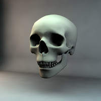 skull c4d