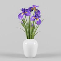 iris vase 3d model