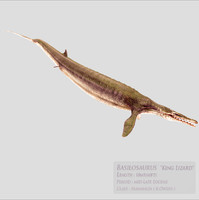 3d model basilosaurus film tv