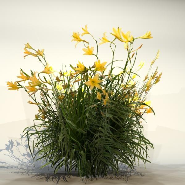 Flower_85_2.jpg