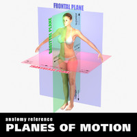planes body female 3d ma