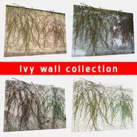 3d odel wall ivy
