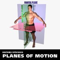 3d model planes body male