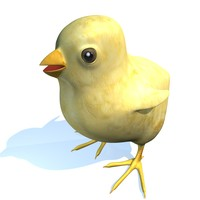 3d model chick special easter