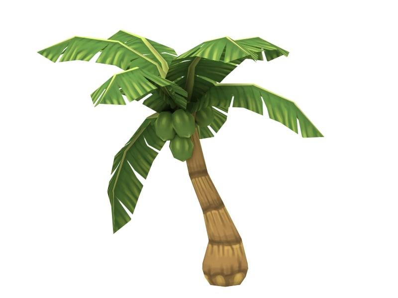 palm01_1.jpg