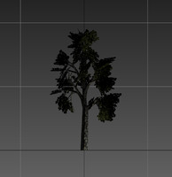 tree resolution gameready 3d obj