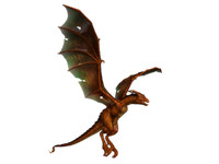 dragons wyvern 3d model