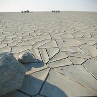 3d model desert stones rock