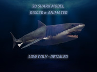 maya great white shark animate