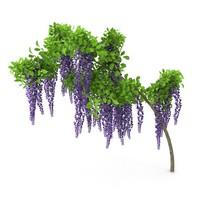 3dsmax wistaria