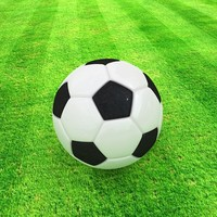 football max