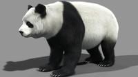 3d panda bear