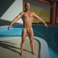 male anatomy 3d max