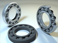 bearing ring max