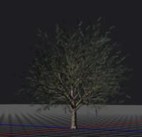 3D tree hd