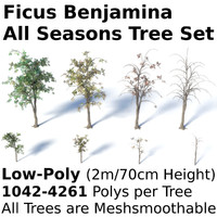 3d tree seasons summer model