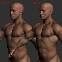 male anatomy body 3d 3ds