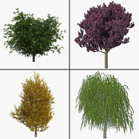 Trees Collection V7