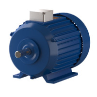 electric motor lwo