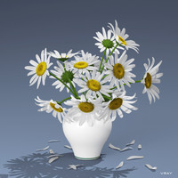 3d bouquet daisies model