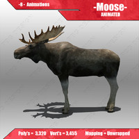 3d model moose animations
