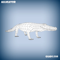 3d model base mesh alligator