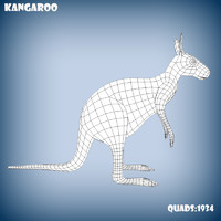 3d kangaroo base model