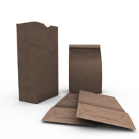 brown paper bag 3d 3ds