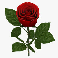 3d rose branch red 02