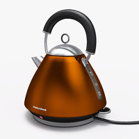kettle morphy richards