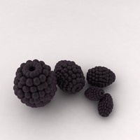 3d berry fruit