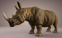 3d model rhino animations