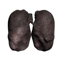 smoker lung max