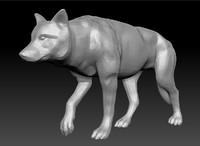 maya wolf canis lupus