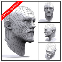 3d male head human body model