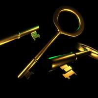 golden key old gold 3d model