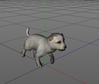 Puppy(FBX Animated)