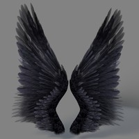 3d realistic wings model