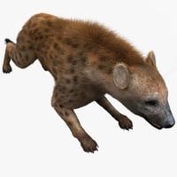 3d hyena pose 5 fur model