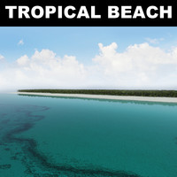 3d model tropical beach
