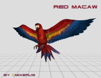 3d model macaw animations
