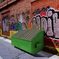max container trash 2011