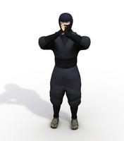 ninja 3ds