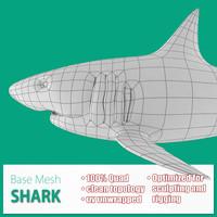 3d base mesh shark