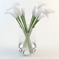 Calla lilies in a vase