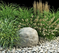 3d grasses planting garden model