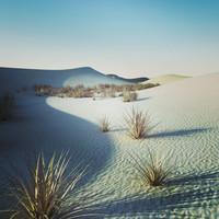 3d model desert 3