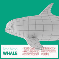 3ds max base mesh whale