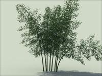3d obj bamboo